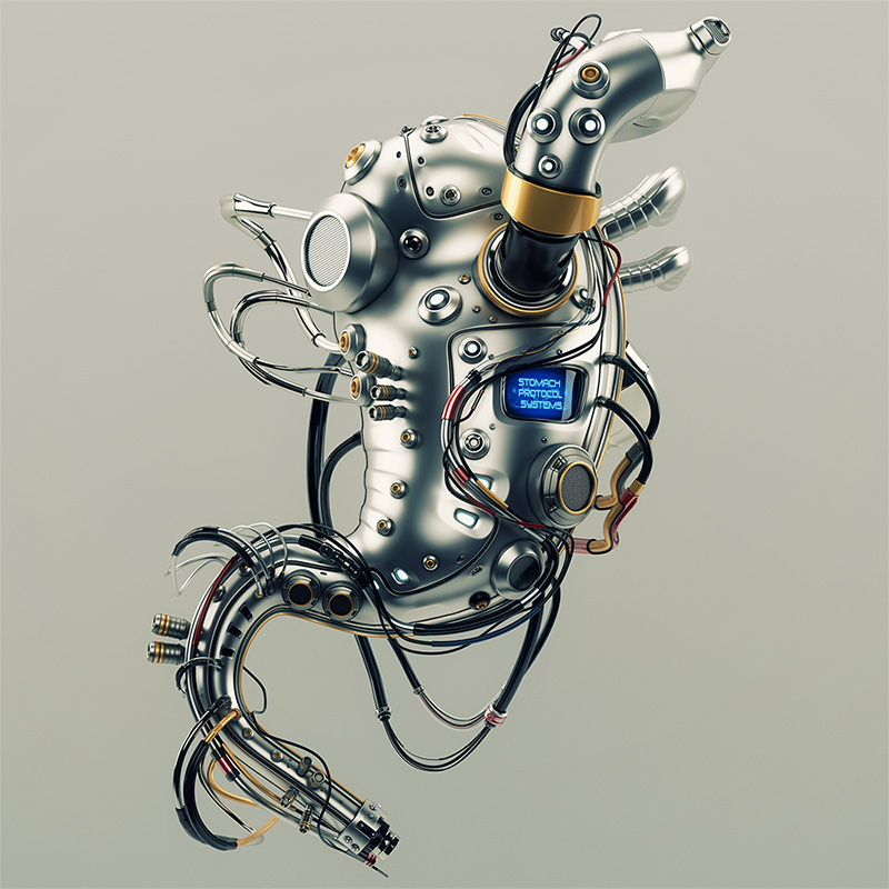 Stomach robotic organ. Artificial robotic internal organ - metal stomach with wires.