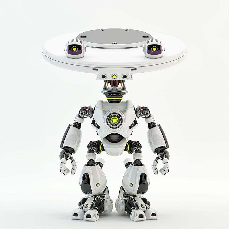 Plate bot with two eyes - cameras