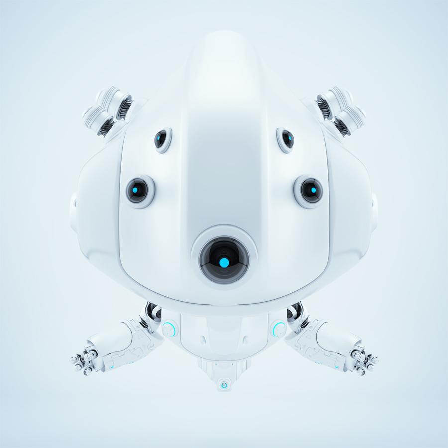 Smart white follow bot