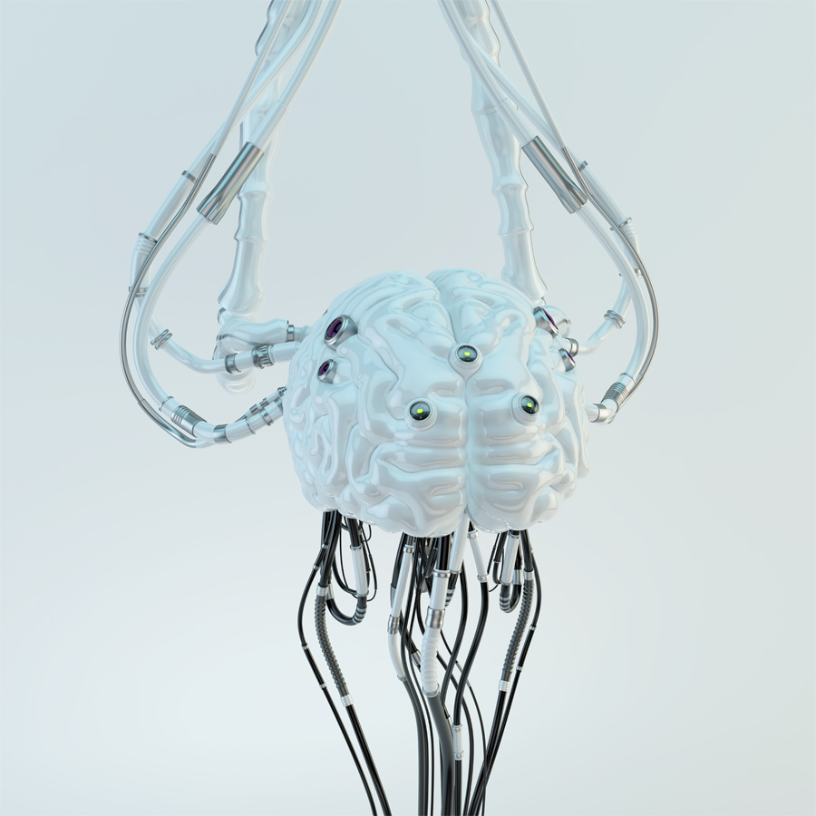 Wired white robotic eternal organ - brain