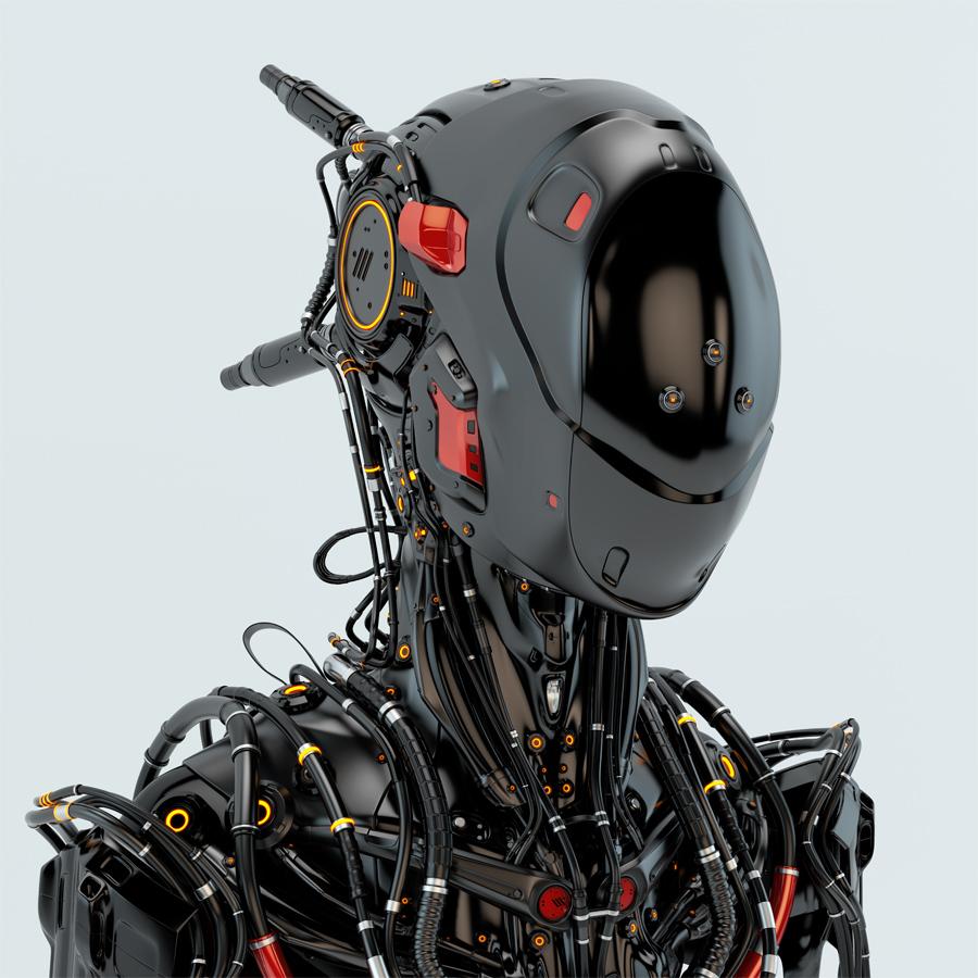 Robot Pilot