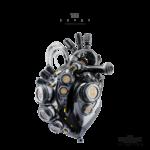 heart v 2 1
